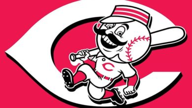 Photo of Cubs @ Reds Series Preview (May 14-16): TV and Game Info, Starting Pitchers, Insights