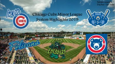 Photo of Watch: 2019 Highlight Video from Cubs' Minor League System